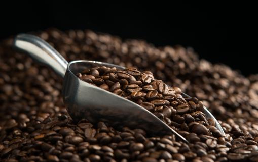 grains de cafe 2