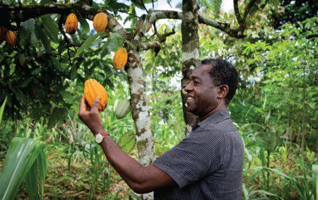 Biodiversité Afrique